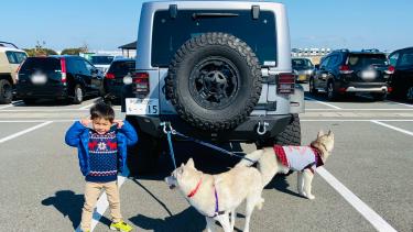 【リアル】犬と子供と車に毎月かかるお金について【間接費が凄い】
