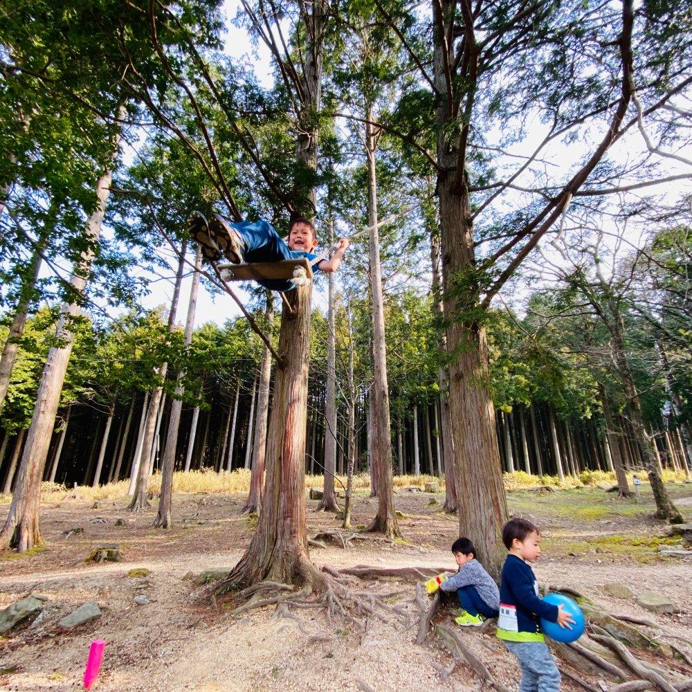 グリム冒険の森